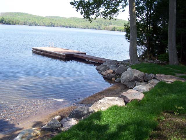 Shoreline in early summer.