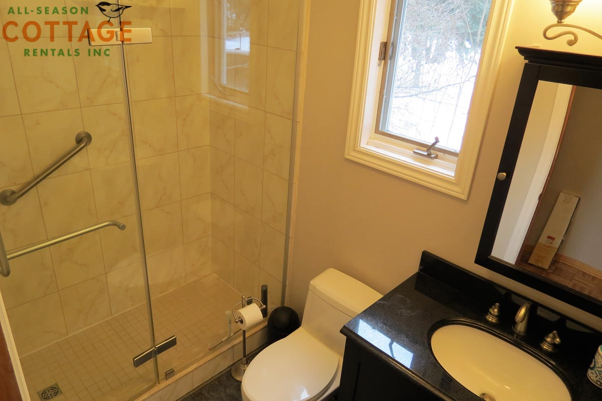 Main floor washroom - 3 PC (notice grab bar in shower)