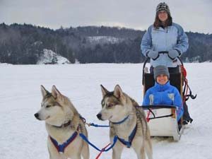 Dogsledding in Haliburton, Ontario