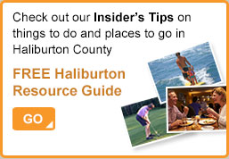 Checkout our Free Haliburton Resource Guide!